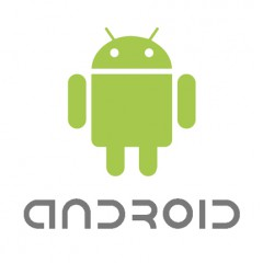 Web dentro de app Android