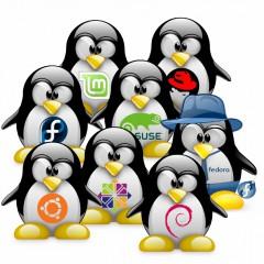 Desinstalar Linux sin romper Windows